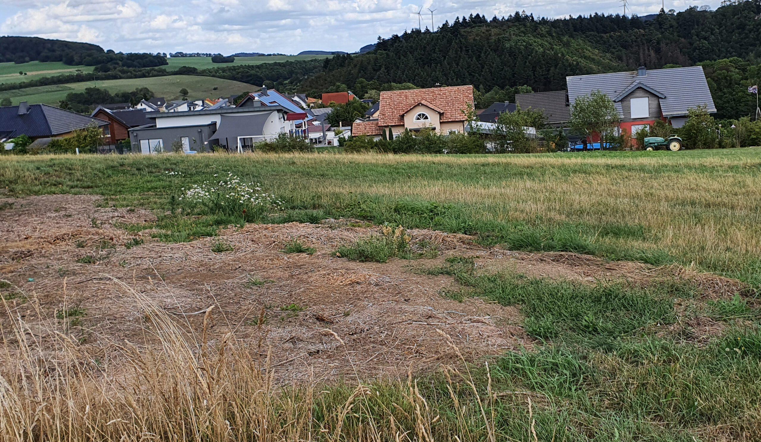 Gemeinderat und Dorfentwicklungsausschuss mit neuen Terminen